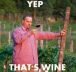 Wine_Snob_300x285