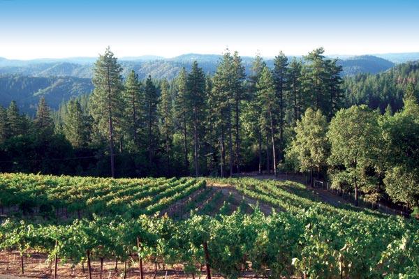Lesser Known Avas Sierra Foothills Appetite For Wine