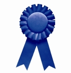 61_1_blue-ribbon-perfect-logo