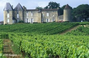 bordeaux-vineyards-france-hiking