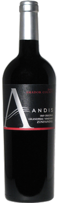 07 Andis OGP